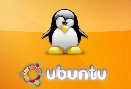 ubuntu pinguin