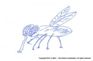 Fliege 4
